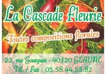 LA CASCADE FLEURIE
