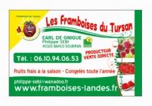 FRAMBOISES DU TURSAN