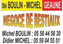 BOULIN MICHEL